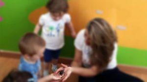 La Mecedora centro infantil: mascota viva
